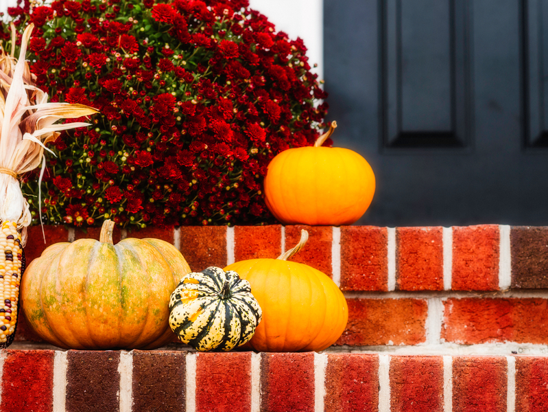 Rustic Decorations for Fall