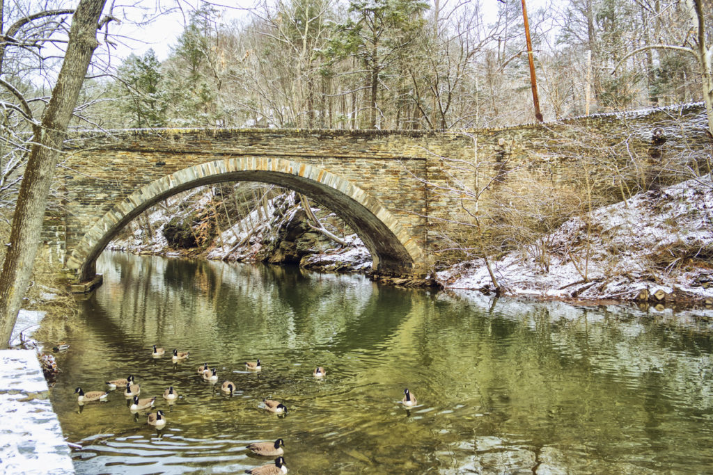 Wissahickon Valley Park, Philadelphia in winter
