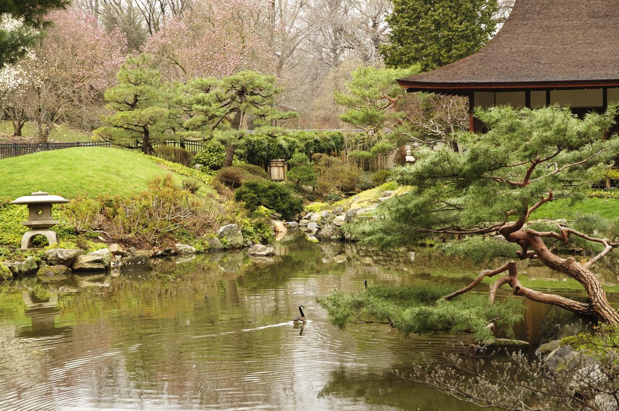 Japanese garden in Philadelphia park
